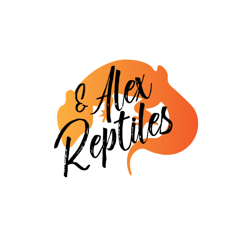 Alex&Reptiles (alex-reptiles)