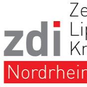 zdi-Zentrum Lippe.MINT net worth