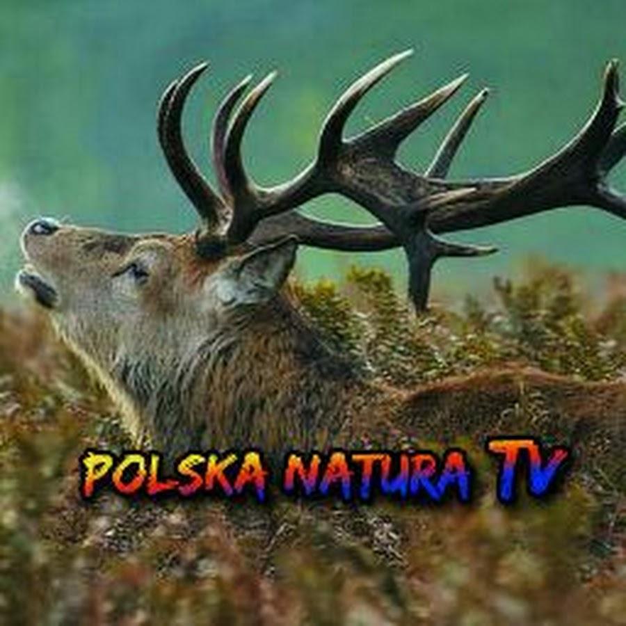 Polska Natura TV