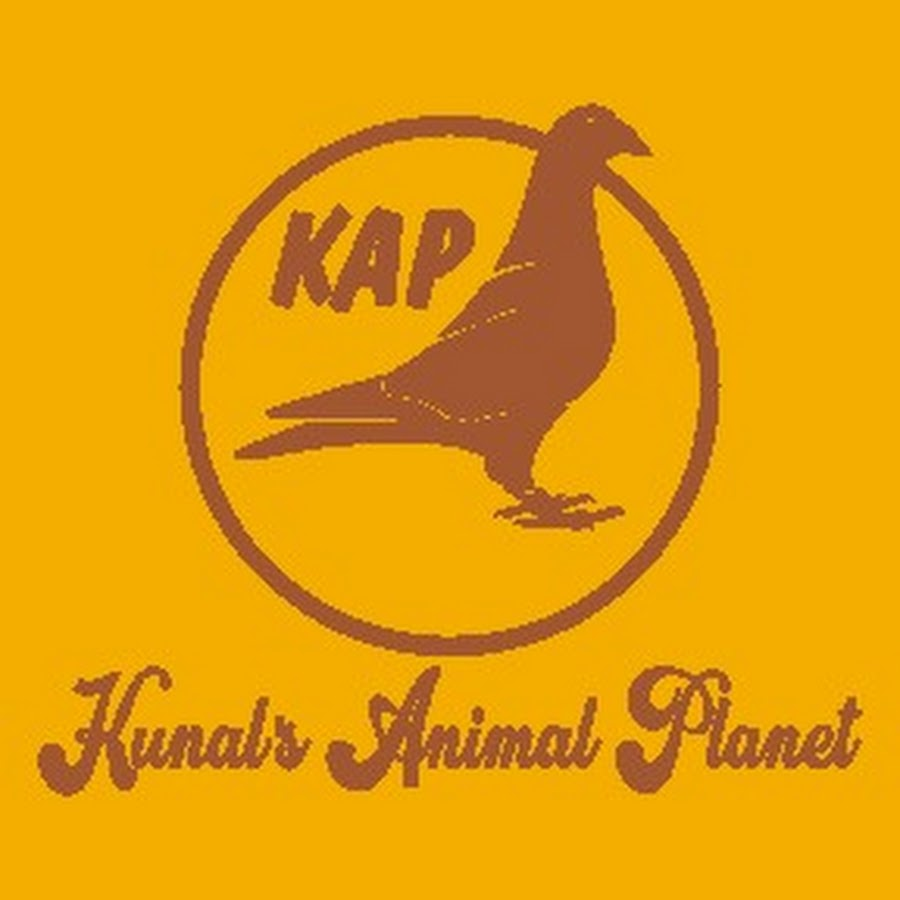 KUNAL'S ANIMAL PLANET