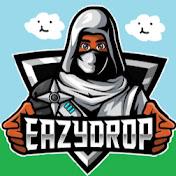 EazyDrop net worth