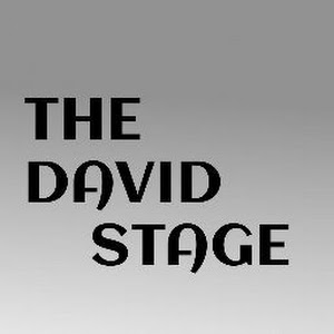 THE DAVID STAGES