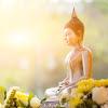 Dharma sukji