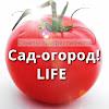 Сад-огород! LIFE