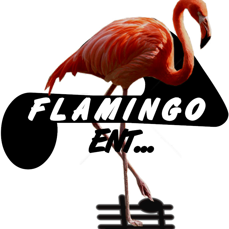 FLAMINGO MUSIC (flamingo-music)