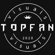 TopFan Visuals net worth