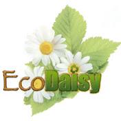 EcoDaisy net worth