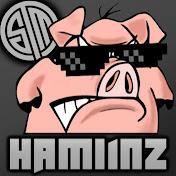 Hamlinz net worth