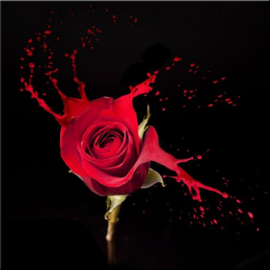 R-EVEIL spirituel