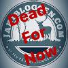 Jaktbloggenpunktcom