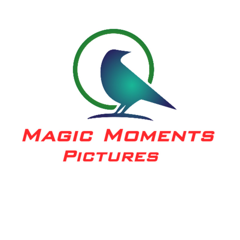 MAGIC MOMENTS PICTURES (magic-moments-pictures)