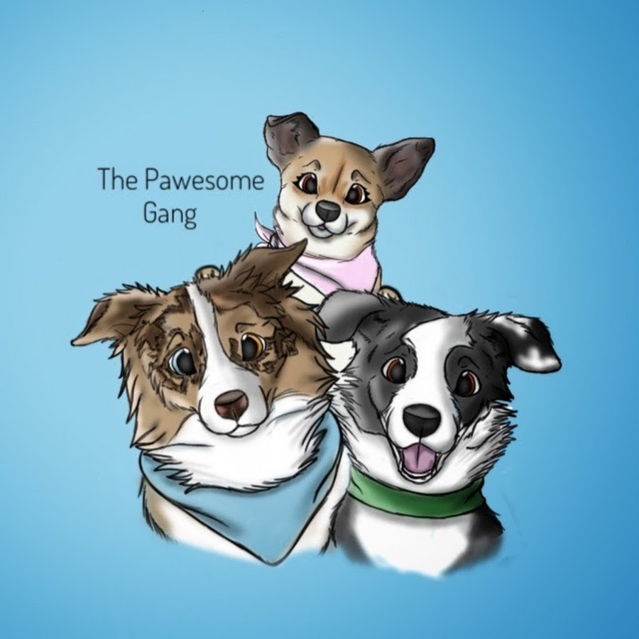 The Pawesome Gang