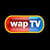 wapTVchannel net worth