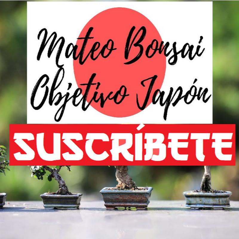 Mateo Bonsai - Objetivo Japón (mateo-bonsai-objetivo-japon)
