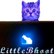 LittleBhoot net worth