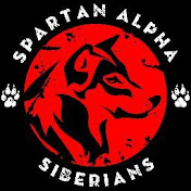 SPARTAN ALPHA TV