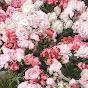 Flower Child - Youtube