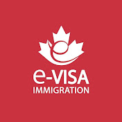 e-Visa Immigration net worth