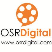 OSR Digital net worth