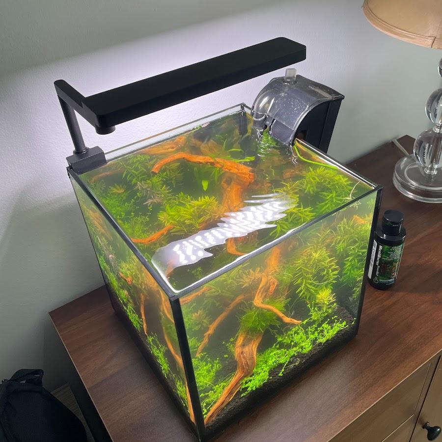 thefishnoob aquatics