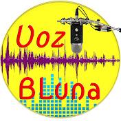 Voz BLuna net worth