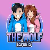 The Wolf eSports net worth