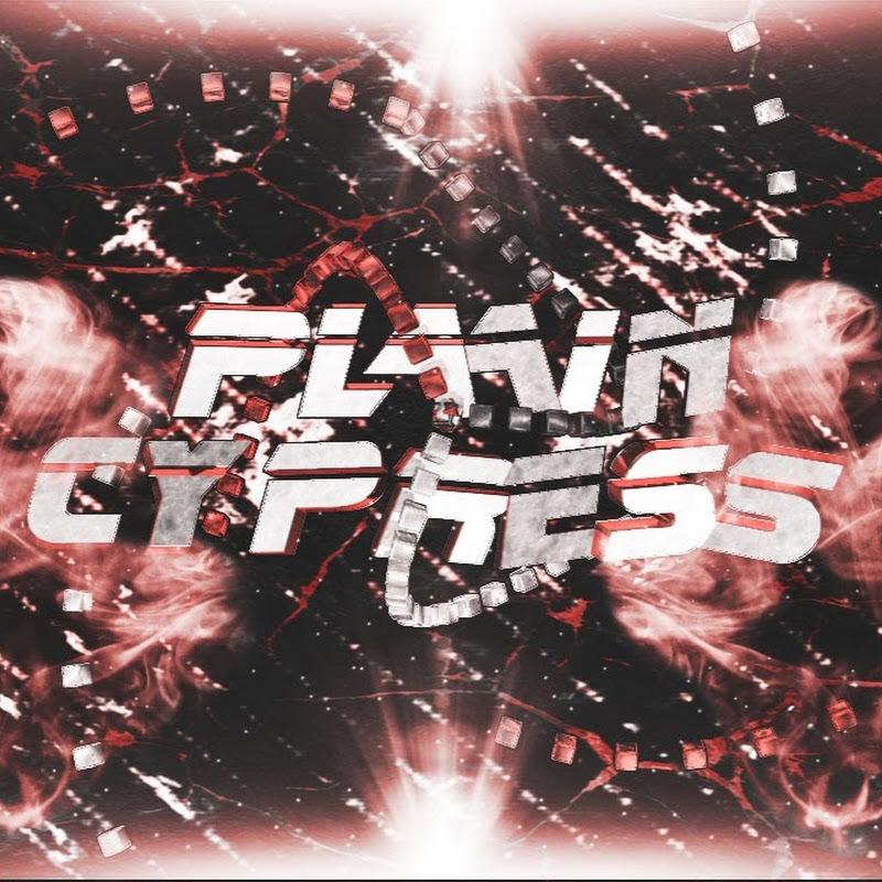 Plain Cypress