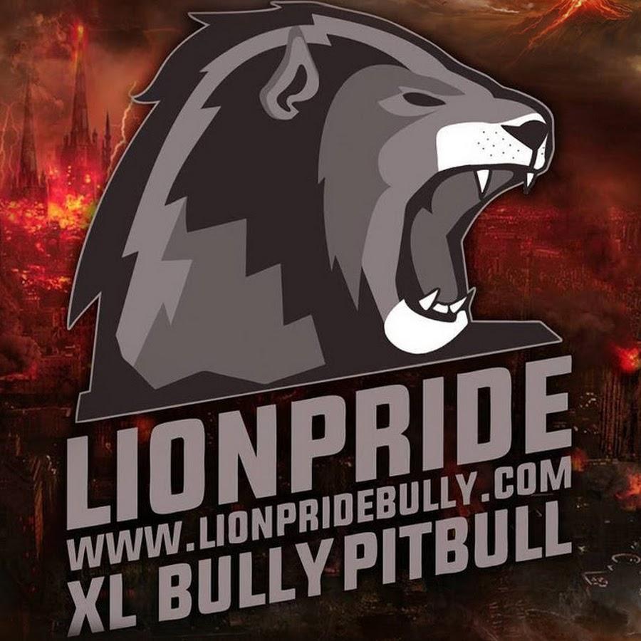 LION PRIDE BULLY