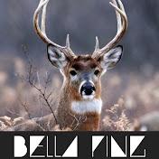 BELLA PING MUSIC CHANNEL net worth