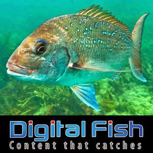 DIGITAL FISH - Content that catches