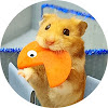 Hamster Stories
