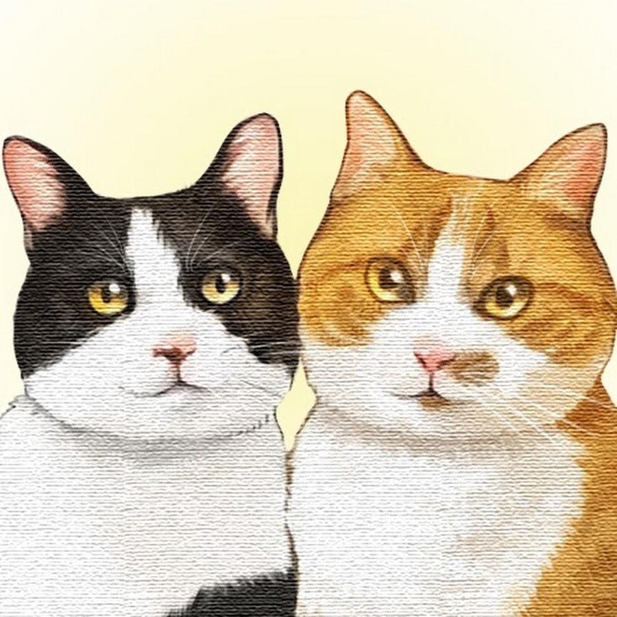 2匹の猫通信/Cats Life TV