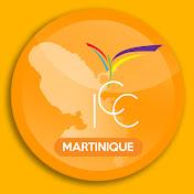 IMPACT CENTRE CHRÉTIEN MARTINIQUE net worth