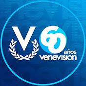 venevisionweb net worth