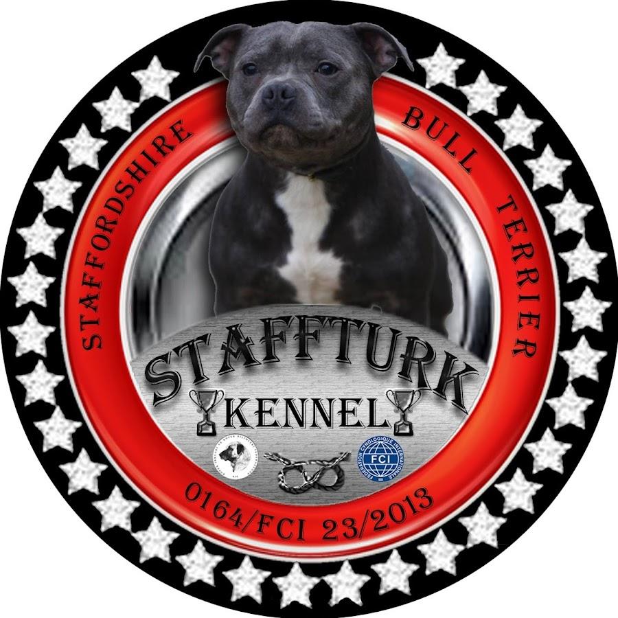 Staffturk kennel