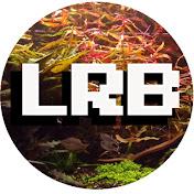 LRB Aquatics -Aquarium Hoarder net worth