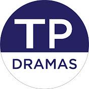 Top Pakistani Dramas net worth