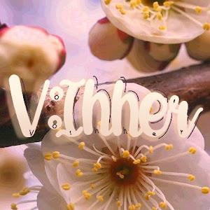 V:Inner