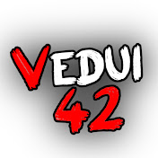 Vedui42 net worth