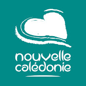 New Caledonia net worth