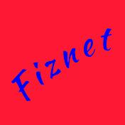 fiznet net worth