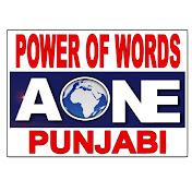 Aone Punjabi Tv net worth
