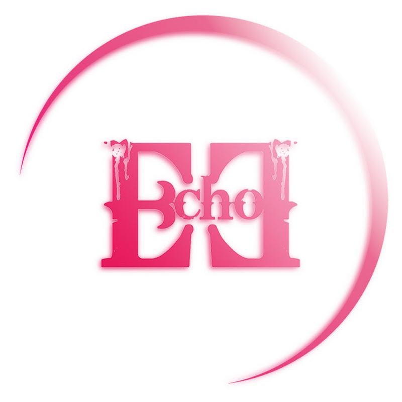 Logo for EchoEnt