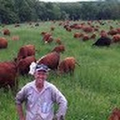 Greg Judy Regenerative Rancher net worth