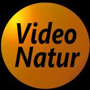 Video Natur net worth