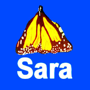Sara Makes Art