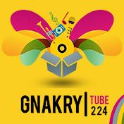 Gnakry Tube 224 net worth