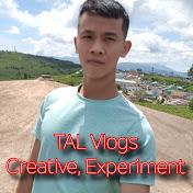 TAL Vlogs net worth