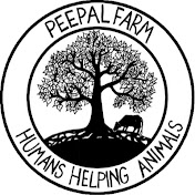 Peepal Farm Avatar