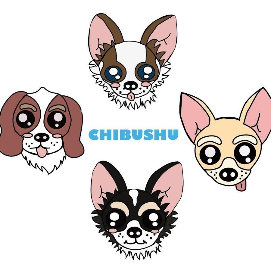 Chibushu Pet